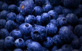 2560_blueberry