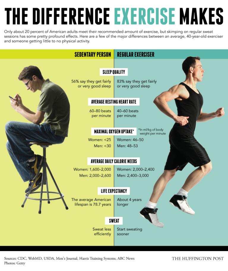 sedentaryvsexercise
