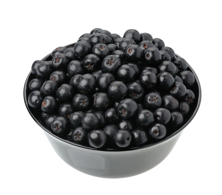 aronia-bowl-of-berries