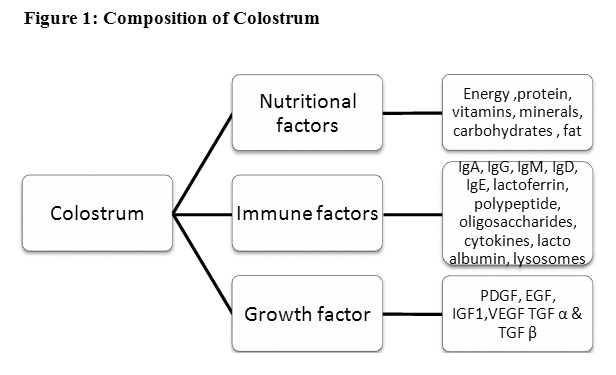 vol1no1_meena_colostrum_fig1