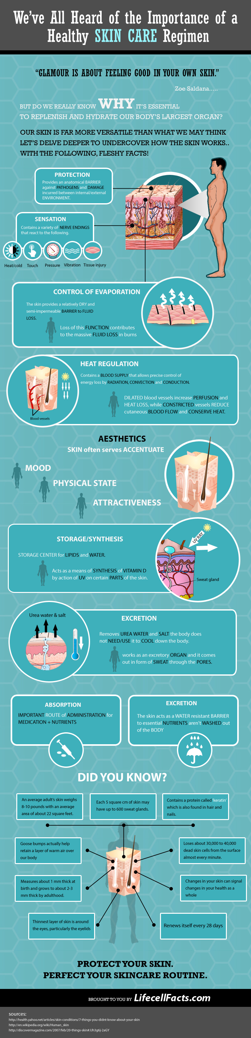 healthy-skin-care-infographic11