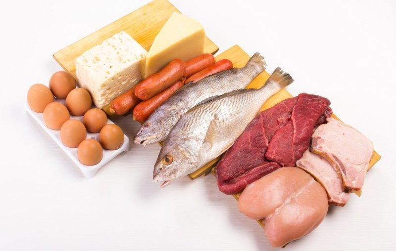 protein-myths-main